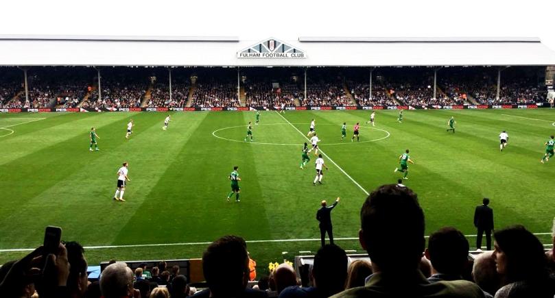 Fulham Football Pitch